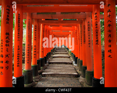Uphill path with steps under bright red japanese gates receding into the distance - Stock Photo