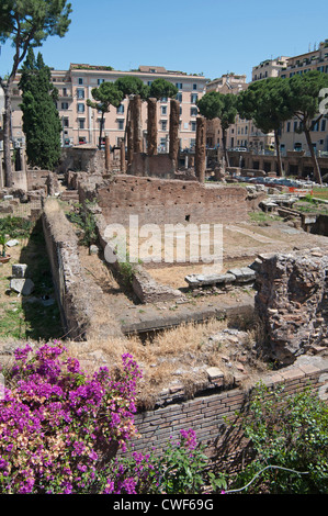 Aedes Fortunae Huiusce in the background of Largo di Torre Argentina which is a square in Rome, Italy - Stock Photo
