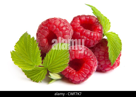 Bunch of a red raspberry on a white background. Close up macro shot. Image was professionally retouched - Stock Photo