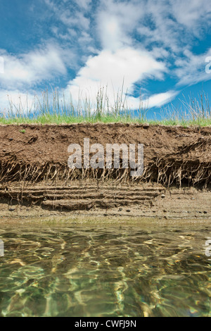 Riverbank on a clear day showing cross section of the earth with roots and layers of dirt - Stock Photo