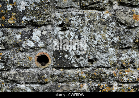 Stone garden wall / detail of weathered stonework with lichen - western Wiltshire.  Visual allegory for narrow/slow - Stock Photo