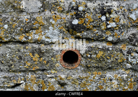 Stone garden wall / detail of weathered stonework with lichen - western Wiltshire.  Visual allegory for 'narrow' - Stock Photo