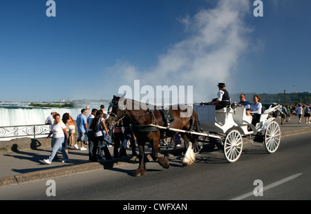 Niagara Falls - Horse-drawn carriage in front of the Horseshoe Falls on the Niagara Parkway - Stock Photo