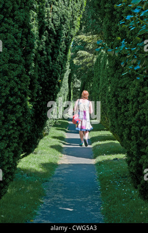 Woman walking through avenue of yew trees in St James Church Yard Chipping Campden Cotswolds England - Stock Photo
