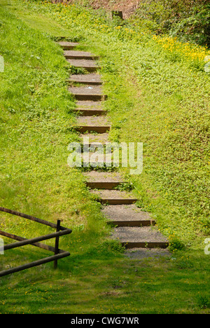 Set of steps in grass area leading from one level to another - Stock Photo