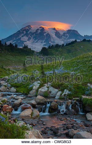 Mount Rainier, capped by a lenticular cloud, towers over a field of wildflowers in Mount Rainier National Park, - Stock Photo