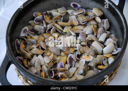 TELLERINA, (Donax trunculus) and romescu sauce tipical aperitif from Tarragona , costa brava , and Maresme on Catalonia - Stock Photo