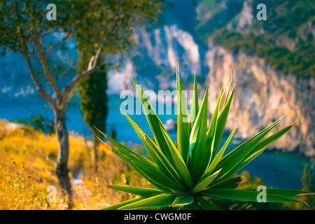 beautiful paleokastritsa corfu greece bay view - Stock Photo
