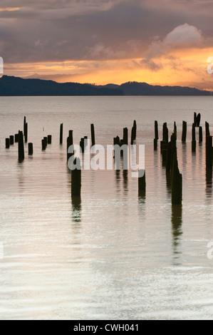 Pilings along Astoria's waterfront on the Columbia River, Astoria, Oregon, USA - Stock Photo