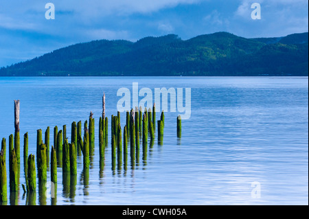 Beautiful sunrise light on hundred-year-old pilings at high tide on the Columbia River, Astoria, Oregon, USA - Stock Photo