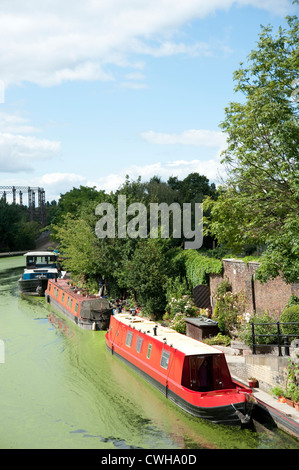House Boats moored at canal side - Stock Photo