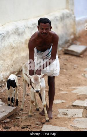 Indian rural man with small bullock  Andhra Pradesh South India
