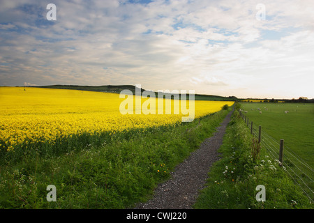Footpath to The Chilterns - Stock Photo