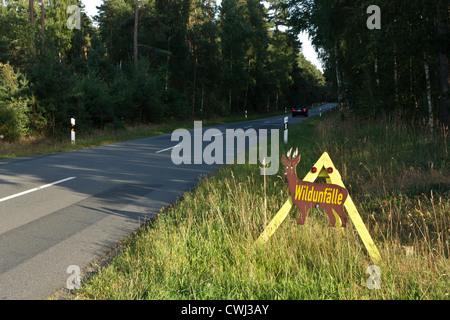 Wildwechsel, Wildunfall, Dämmerung, Rehe, Wildschweine - Stock Photo