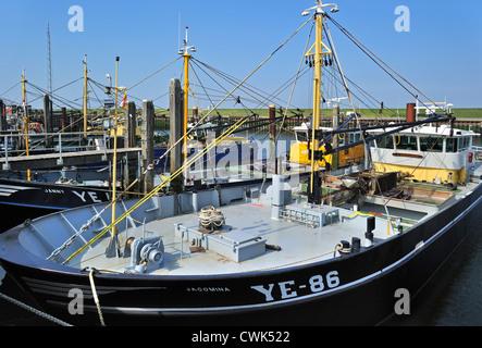 Fishing boat / Mussel cutter in the harbour of Yerseke along the Oosterschelde / Eastern Scheldt, Zealand, the Netherlands - Stock Photo