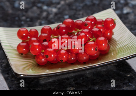 fresh and ripe currants on a plate - Stock Photo