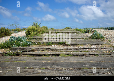 Old Wooden Railway Sleepers On The Beach At Pagham Harbour