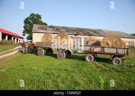 Tractor and farm wagons loaded with large round hay bails ready to be loaded into the barn. Zawady Central Poland - Stock Photo