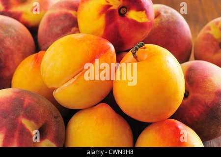 Yellow plums, peaches and nectarines are a great bunch of stacked on the table - Stock Photo