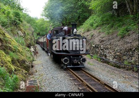 Steam train on the narrow gauge welsh highland railway - Stock Photo