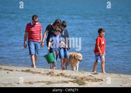 Family walking along the beach with their dog. Bribie Island, Queensland, Australia - Stock Photo