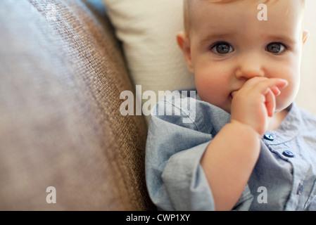 Baby boy, portrait - Stock Photo
