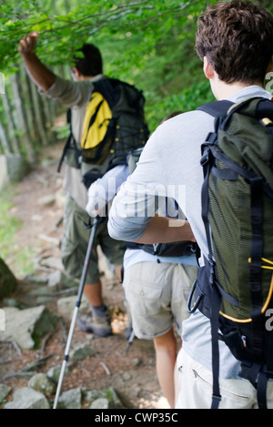 Hikers hiking in woods, rear view - Stock Photo