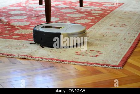 Automatic Cleaning With Robot Vacuum Cleaner On Rug And Hardwood