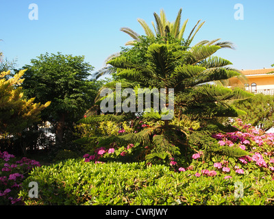 Lots of trees and flowers - Stock Photo