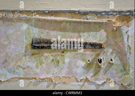 Old Dirty Comb Stuck To Wall With Peeling Wallpaper & Paint - Stock Photo