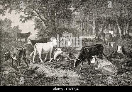 Herd grazing in the wood - Stock Photo