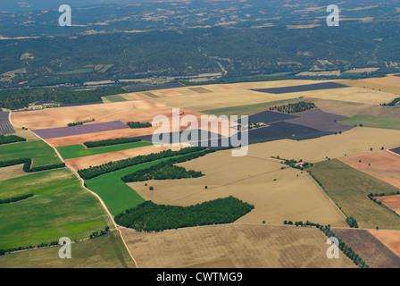 Aerial view of lavender fields in end June, plateau de Valensole, arround Valensole town, Alpes de Haute Provence, - Stock Photo