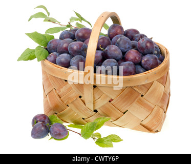 Real blue plums in a wicker rustic basket. Fruit grown without fertilizers. Isolated. Selective focus - Stock Photo