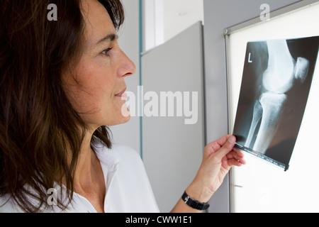 Doctor examining x-rays - Stock Photo