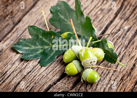 Acorn with leaves on a old wooden table - Stock Photo