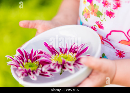Girl holding flowers in bowl outdoors - Stock Photo