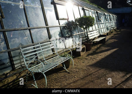 The cafe at Petersham Nurseries, Richmond, Surrey, England, UK. - Stock Photo
