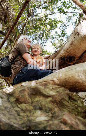 Father and son sitting up in a tree - Stock Photo