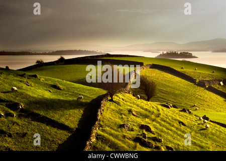 Stone walls on grassy rural hillside - Stock Photo