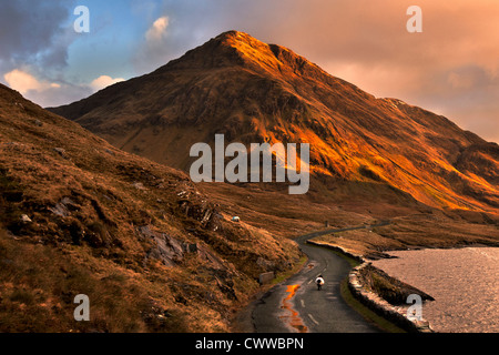 Sheep walking on rural mountain road - Stock Photo
