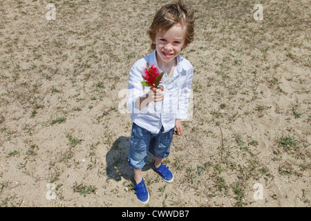 Boy holding flower on grassy beach - Stock Photo
