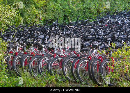 Bicycle stall in Hilton Head Island (South Carolina, USA). - Stock Photo