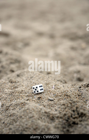 craps on the sand - Stock Photo
