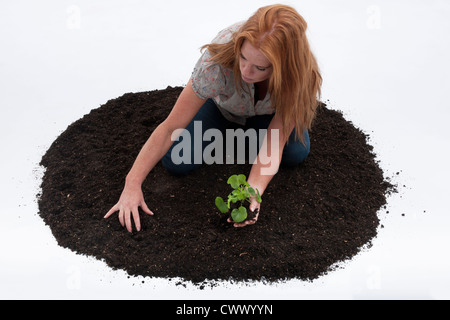 Woman planting seedling in pile of dirt - Stock Photo