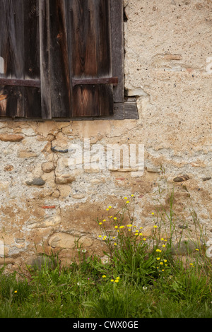 wooden window shutter pebble stone wall green grass old derelict abandoned crumbling - Stock Photo