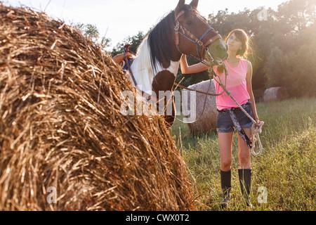 Woman walking horse in meadow - Stock Photo