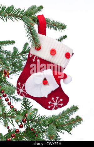 Christmas sock with Santa Claus on on fir branch. White background. - Stock Photo