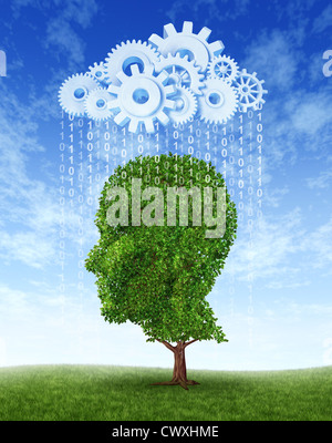Cloud computing intelligence growth as a green tree in the shape of a human head growing intelligent from information - Stock Photo