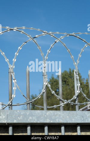 Looking up at coils of razor wire on top of a gate with metal spikes against blue sky - Stock Photo