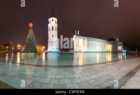 Vilnius cathedral at christmas night with reflection. Lithuania, Europe. Landmark, building with white columns, - Stock Photo